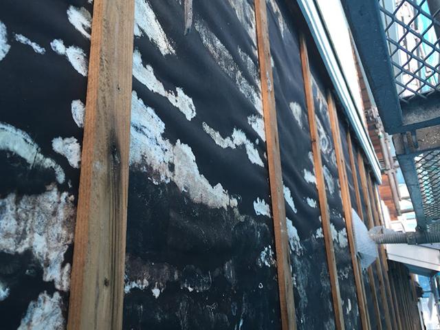 外壁サイディングをめくったところ結露でカビが生えているケース